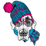 Cute puppy wearing a hat and scarf. Vector illustration for greeting card, poster, or print on clothes. Dog clothing. Royalty Free Stock Images