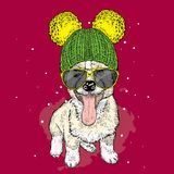 Cute puppy wearing a hat and sunglasses. Illustration for a card or poster. Vector illustration. Dog. vector illustration