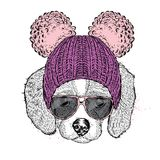 Cute puppy wearing a hat and sunglasses. Illustration for a card or poster. Vector illustration. Dog. royalty free illustration