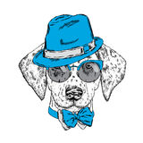 Cute puppy wearing a hat, sunglasses and a tie. Vector illustration. Beautiful dog. Dalmatians. Royalty Free Stock Photo
