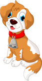 Cute puppy wearing a red collar with bells Royalty Free Stock Photography