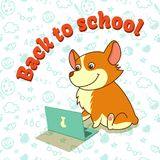Cute puppy of welsh corgi learning with laptop. Back to school. Vector illustration. For cards, calendars, posters. Flat design vector illustration