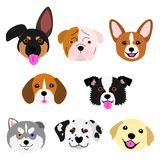 Cute pups face set. Eight breeds puppies in one group vector illustration