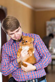 Cute purebred  chihuahua and young man Royalty Free Stock Photography
