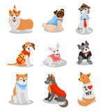 Cute purebred puppies set, pedigree dog characters vector Illustrations on a white background vector illustration