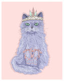 Cute purple cat princess with crown and ribbons. Stock Images