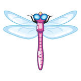 Cute Purple Dragonfly with Blue Wings Stock Image