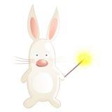 Cute rabbit Stock Photography