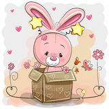 Cute Rabbit in a box Stock Images