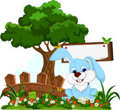 Cute rabbit cartoon with blank board in flower garden Royalty Free Stock Image