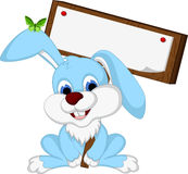 Cute rabbit cartoon holding wooden board Stock Photography