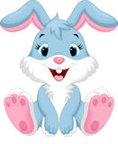Cute rabbit cartoon. Illustration of cute rabbit cartoon isolated on white background Royalty Free Stock Photography