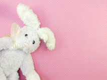 Cute rabbit doll on pink polka dot background Stock Photography