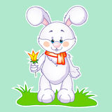 Cute rabbit with flower Stock Images