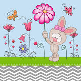 Cute Rabbit with a Flower Royalty Free Stock Photos