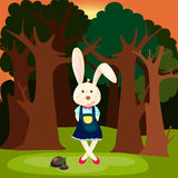 Cute rabbit in the forest Stock Photography