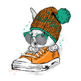 Cute rabbit with glasses and a hat with a bubo. Hare sitting in sneakers. Vector illustration for greeting card, poster, or print on clothes. Fashion & Style Stock Photography
