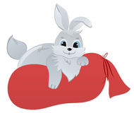 Cute Rabbit with presents Royalty Free Stock Photos