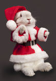 Cute rabbit in a santa costume Royalty Free Stock Photography