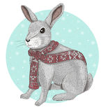 Cute rabbit with scarf winter background. Wit snowflakes Royalty Free Stock Photography