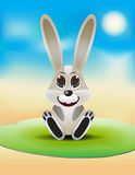 Cute rabbit sit on grass Stock Images