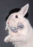 Cute rabbit in top hat and bow-ti Stock Photo
