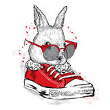 Cute rabbit wearing glasses. Hare sitting in sneakers. Stock Image