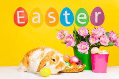 Cute rabbit and word Easter on yellow background Royalty Free Stock Photo