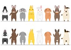 Cute rabbits border set. Front view and rear view, standing on feet vector illustration