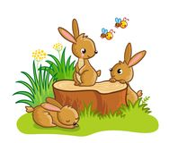 Cute rabbits sitting around the stump. Royalty Free Stock Photography
