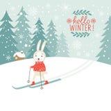 Cute rabbits skis Stock Photo