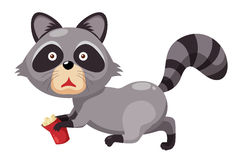 Cute raccoon Stock Images