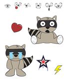 Cute raccoon baby cartoon expression set5 Royalty Free Stock Photo