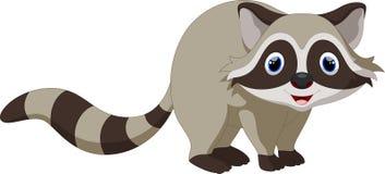 Cute raccoon cartoon Stock Photos