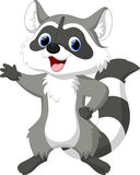 Cute raccoon cartoon Royalty Free Stock Photography