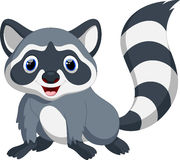 Clip Art Racoon Stock Photos, Images, & Pictures - 94 Images Raccoon Face Clip Art