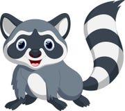 Cute raccoon cartoon Royalty Free Stock Images