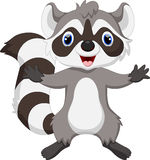 Cute raccoon cartoon Stock Photos