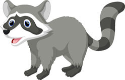 Cute raccoon cartoon Royalty Free Stock Photography