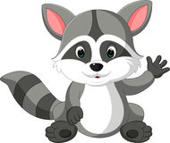 Cute raccoon cartoon Stock Images