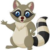 Cute raccoon cartoon waving Royalty Free Stock Images