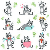 Cute Raccoon Character In Different Situations Set Royalty Free Stock Images