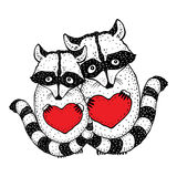 Cute raccoon with heart in hands. Hand Drawn vector illustration Royalty Free Stock Images