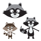 Cute raccoon isolated Stock Photo