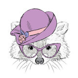 Cute raccoon in a ladies hat. Royalty Free Stock Photography