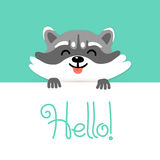 Cute raccoon says hello to you Royalty Free Stock Images
