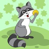 Cute raccoon sits on a green meadow and eats. vector illustration
