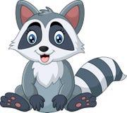 Cute raccoon sitting Stock Photo