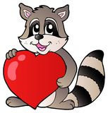 Cute racoon holding heart Royalty Free Stock Images