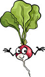 Cute radish vegetable cartoon illustration Stock Photography